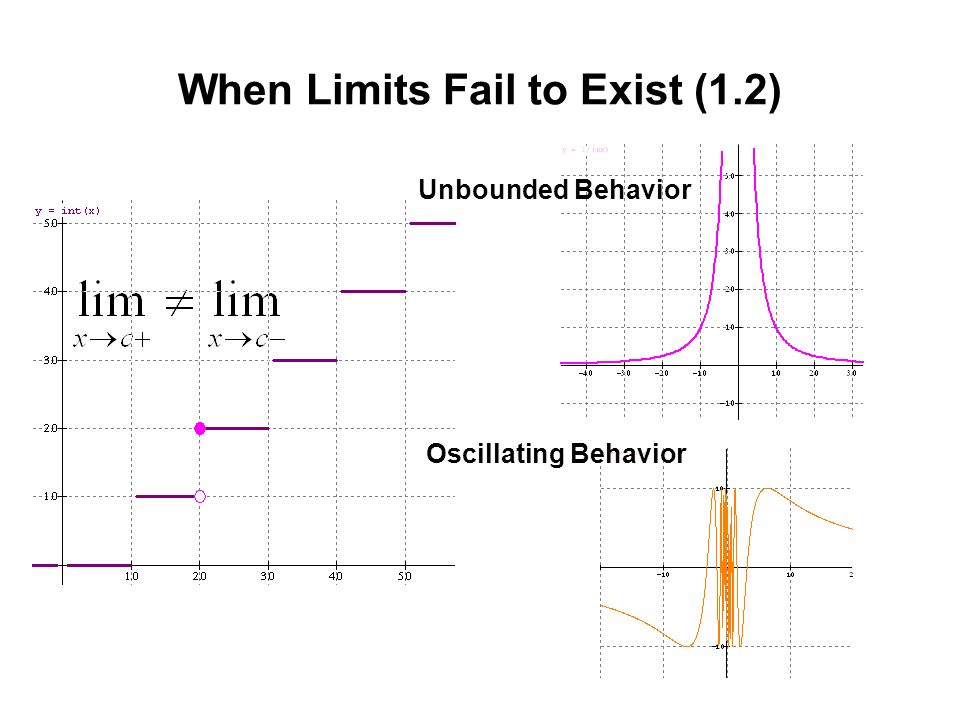When Limits Fail to Exist (1.2) Unbounded Behavior Oscillating Behavior