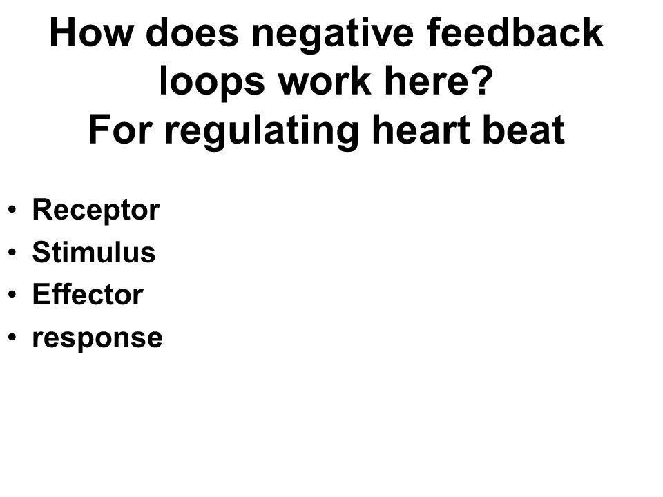 How does negative feedback loops work here? For regulating heart beat Receptor Stimulus Effector response