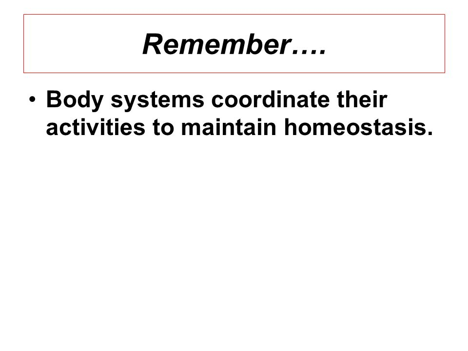Remember…. Body systems coordinate their activities to maintain homeostasis.