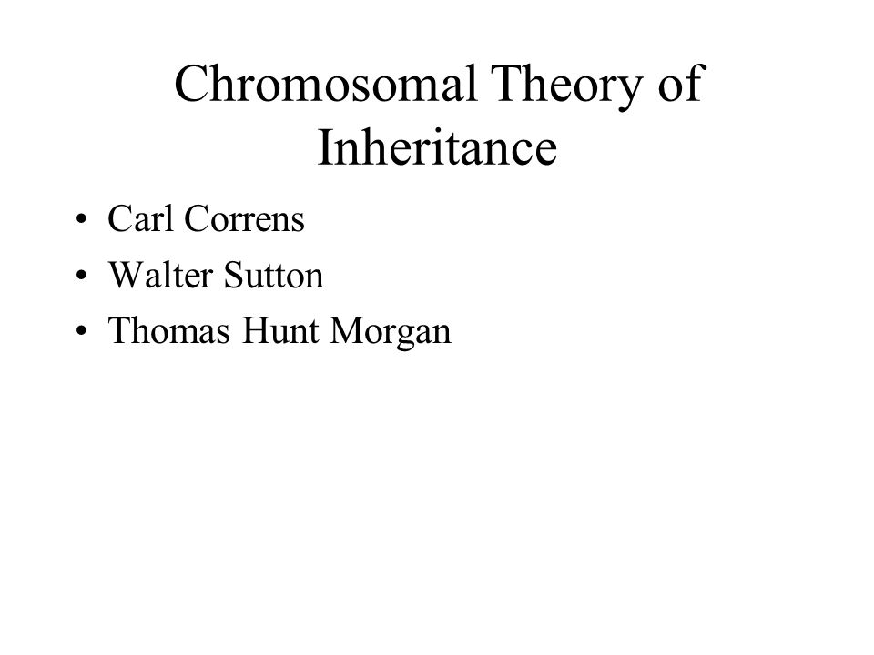 Chromosomal Theory of Inheritance Carl Correns Walter Sutton Thomas Hunt Morgan