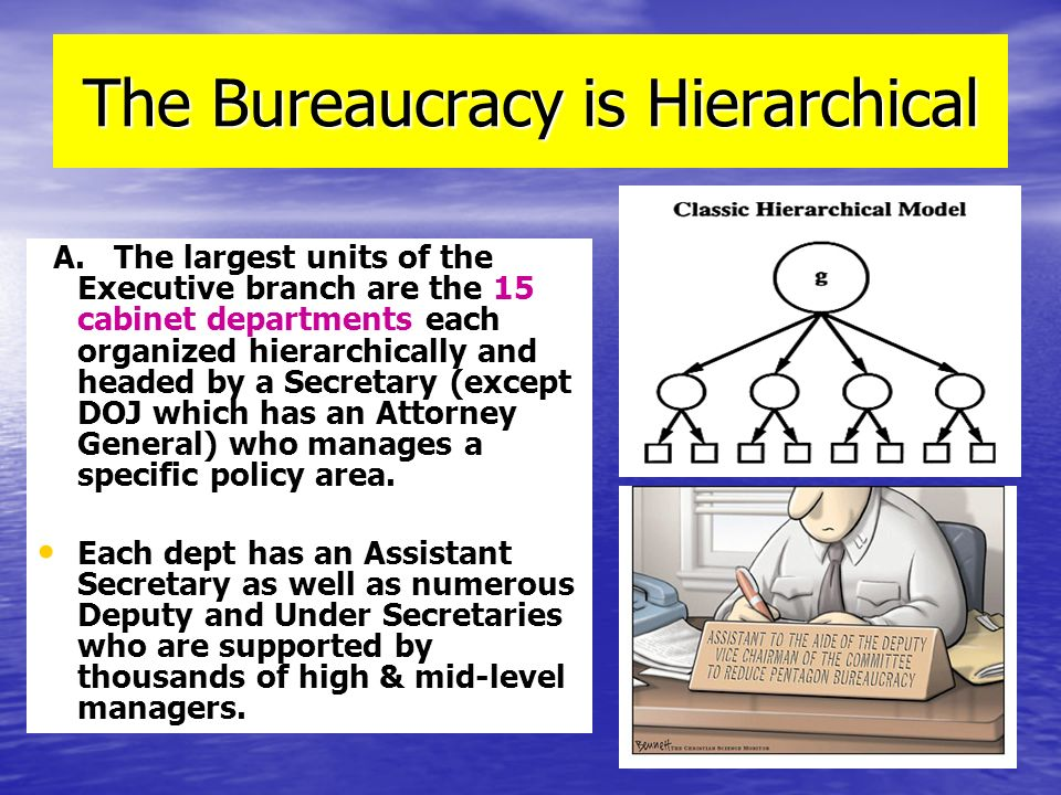 The Bureaucracy is Hierarchical A. The largest units of the Executive branch are the 15 cabinet departments each organized hierarchically and headed b