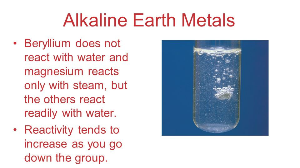 Alkaline Earth Metals Beryllium does not react with water and magnesium reacts only with steam, but the others react readily with water. Reactivity te