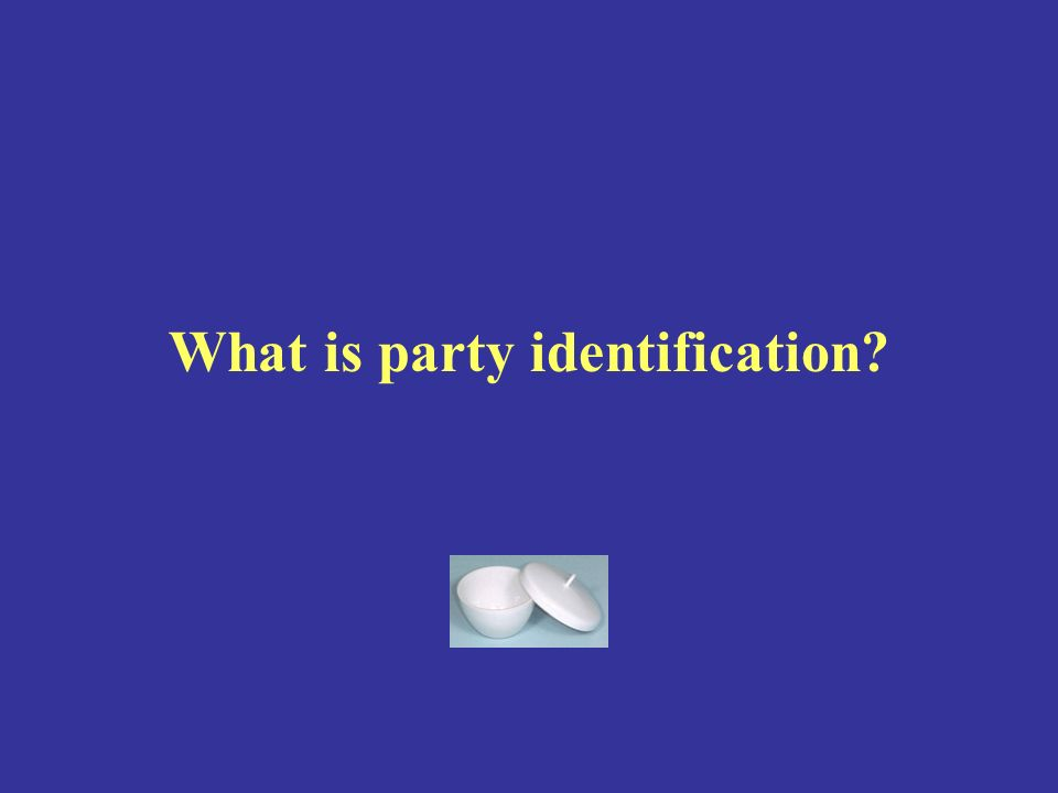 What is party identification