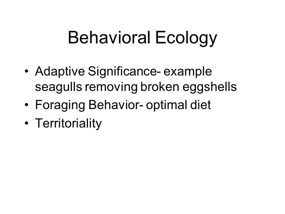 Behavioral Ecology Adaptive Significance- example seagulls removing broken eggshells Foraging Behavior- optimal diet Territoriality