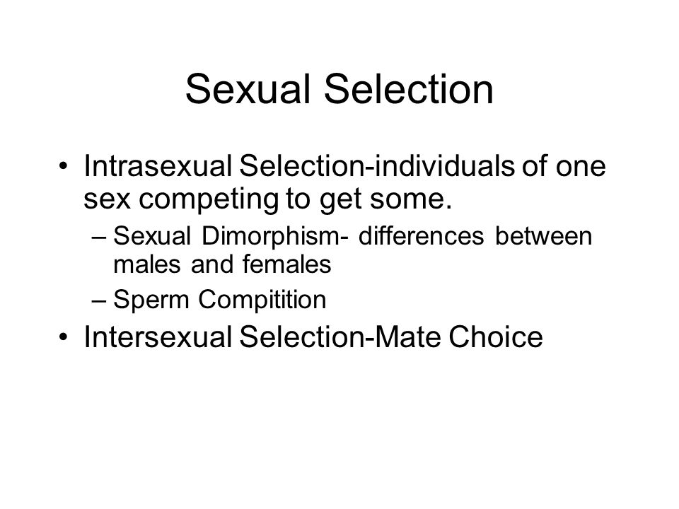 Sexual Selection Intrasexual Selection-individuals of one sex competing to get some. –Sexual Dimorphism- differences between males and females –Sperm