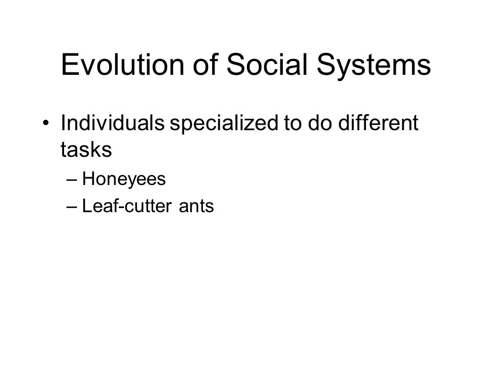 Evolution of Social Systems Individuals specialized to do different tasks –Honeyees –Leaf-cutter ants