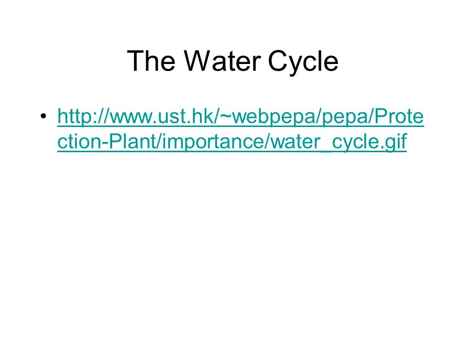 The Water Cycle http://www.ust.hk/~webpepa/pepa/Prote ction-Plant/importance/water_cycle.gifhttp://www.ust.hk/~webpepa/pepa/Prote ction-Plant/importan