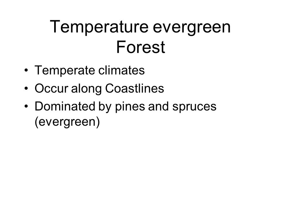 Temperature evergreen Forest Temperate climates Occur along Coastlines Dominated by pines and spruces (evergreen)