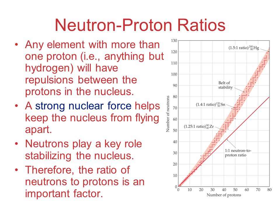 Neutron-Proton Ratios Any element with more than one proton (i.e., anything but hydrogen) will have repulsions between the protons in the nucleus. A s