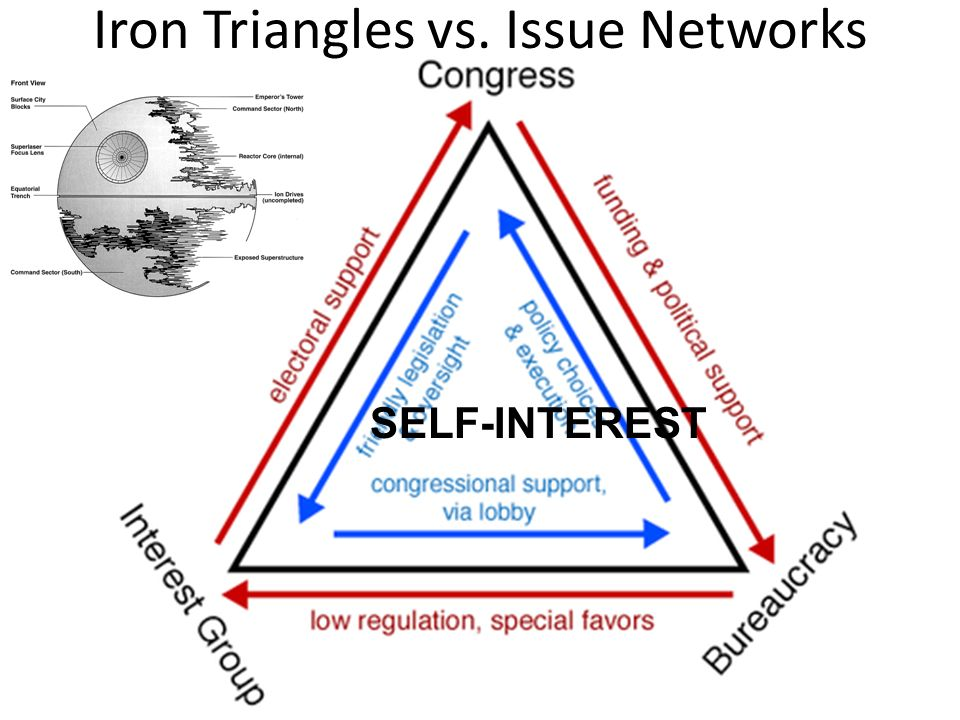 Iron Triangles vs. Issue Networks SELF-INTEREST