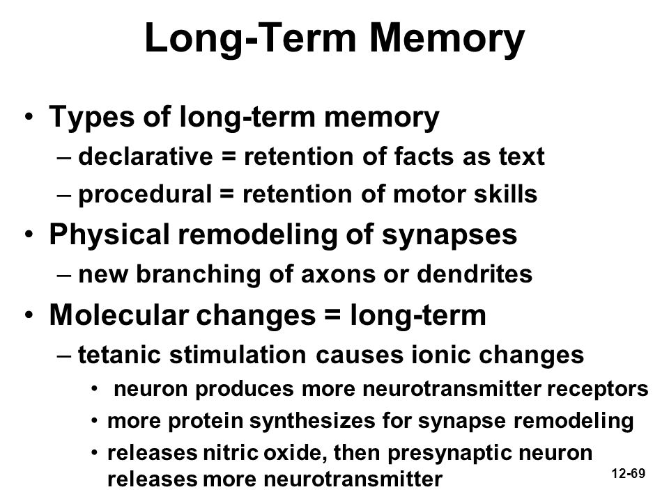 12-69 Long-Term Memory Types of long-term memory –declarative = retention of facts as text –procedural = retention of motor skills Physical remodeling