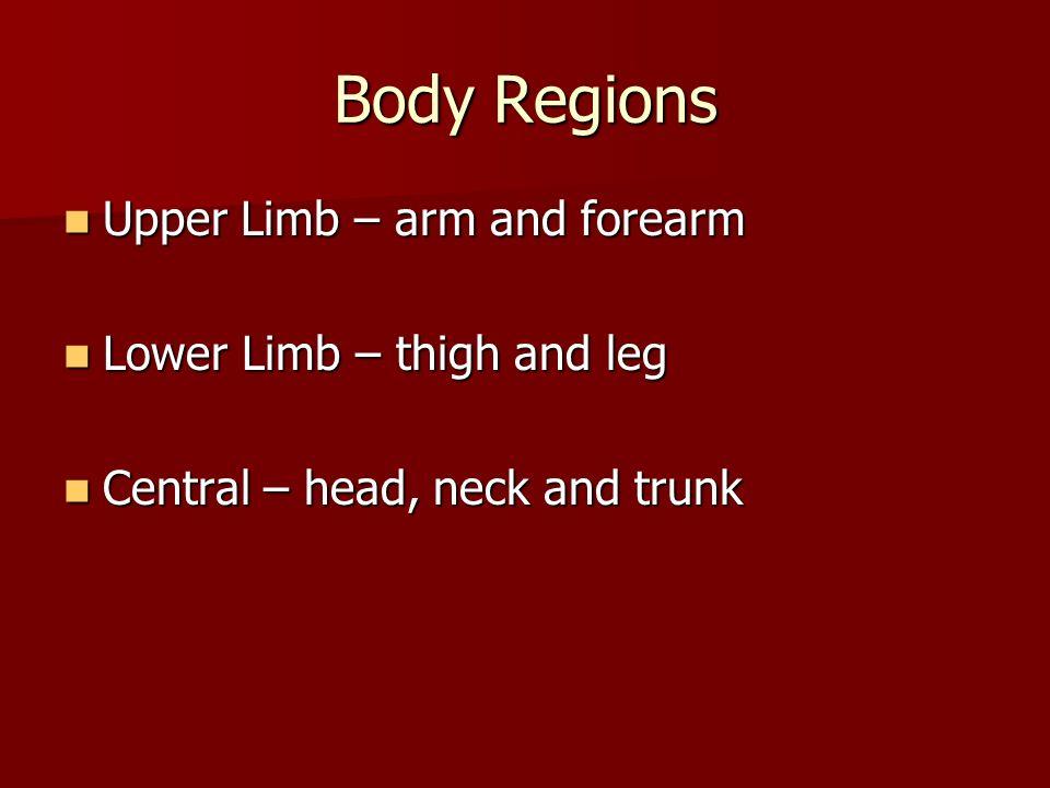 Body Regions Upper Limb – arm and forearm Upper Limb – arm and forearm Lower Limb – thigh and leg Lower Limb – thigh and leg Central – head, neck and