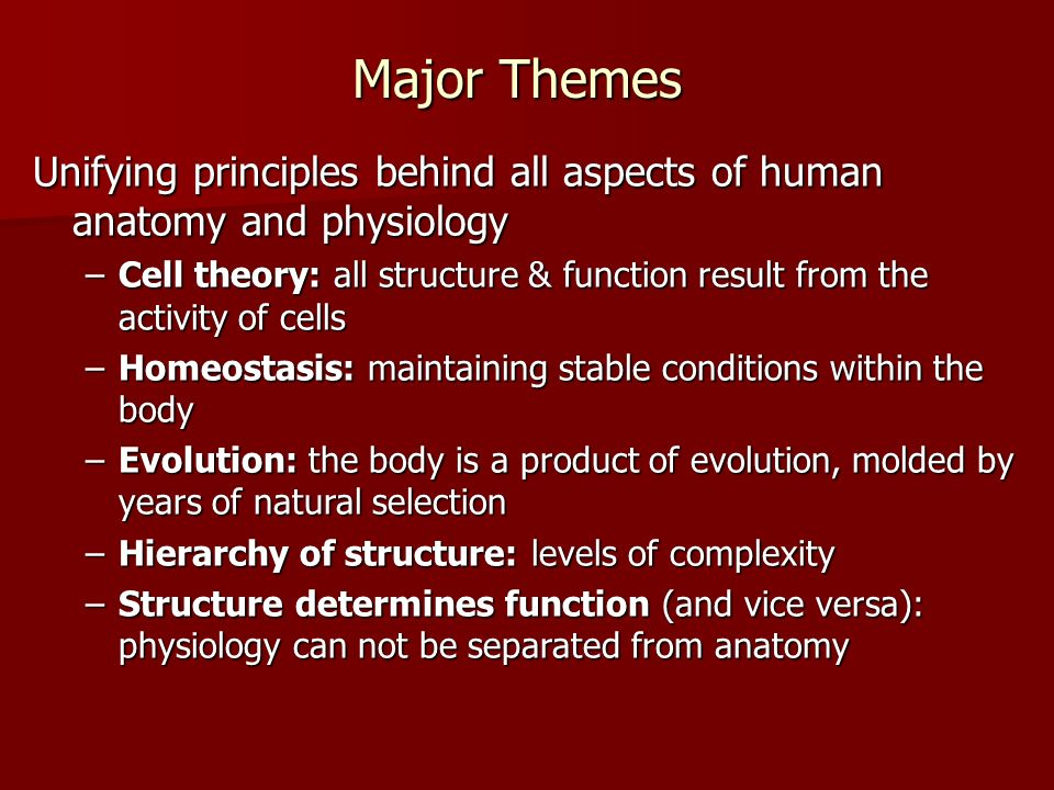Major Themes Unifying principles behind all aspects of human anatomy and physiology –Cell theory: all structure & function result from the activity of