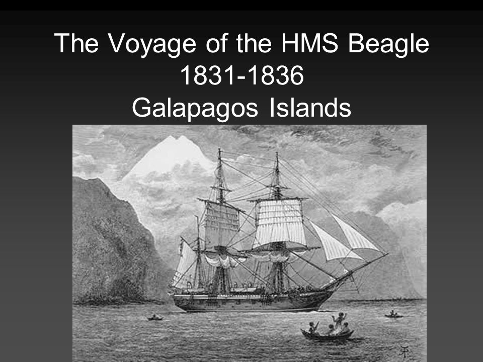 The Voyage of the HMS Beagle 1831-1836 Galapagos Islands