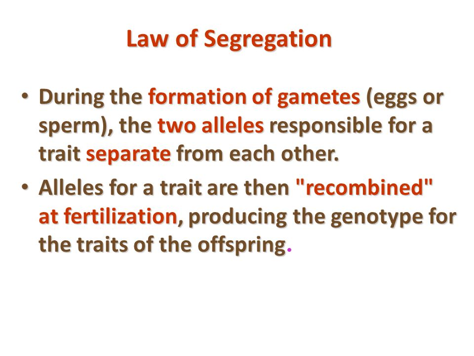 Law of Segregation During the formation of gametes (eggs or sperm), the two alleles responsible for a trait separate from each other. During the forma