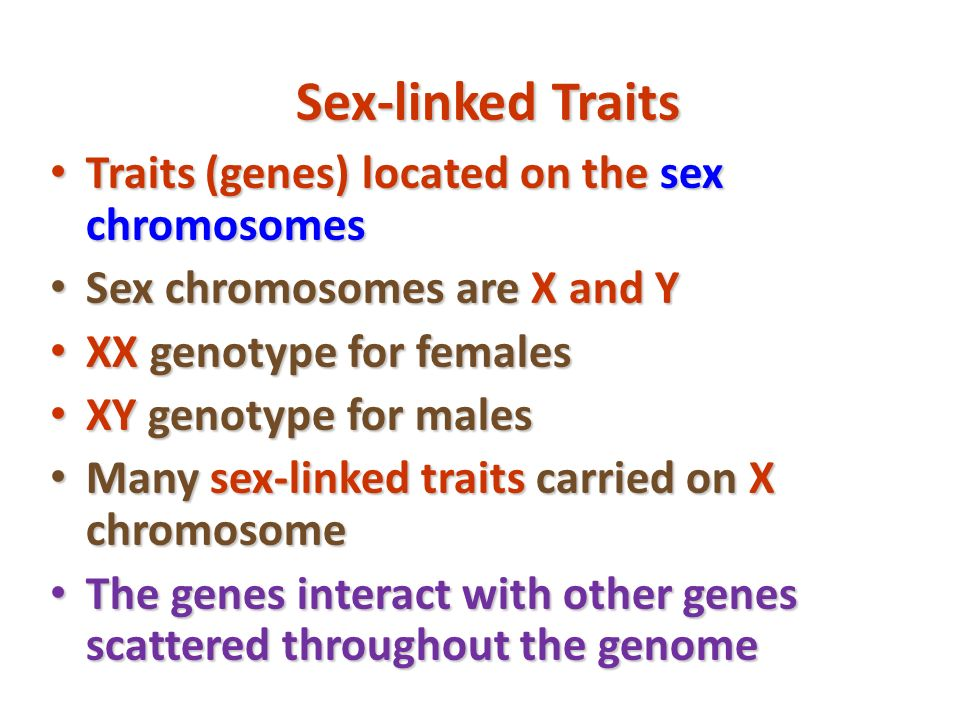 Sex-linked Traits Traits (genes) located on the sex chromosomes Traits (genes) located on the sex chromosomes Sex chromosomes are X and Y Sex chromoso