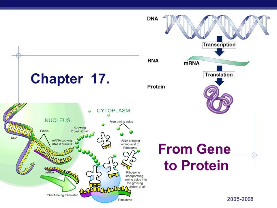 AP Biology 2005-2006 Protein targeting Signal peptide address label Destinations: secretion nucleus mitochondria chloroplasts cell membrane cytoplasm start of a secretory pathway