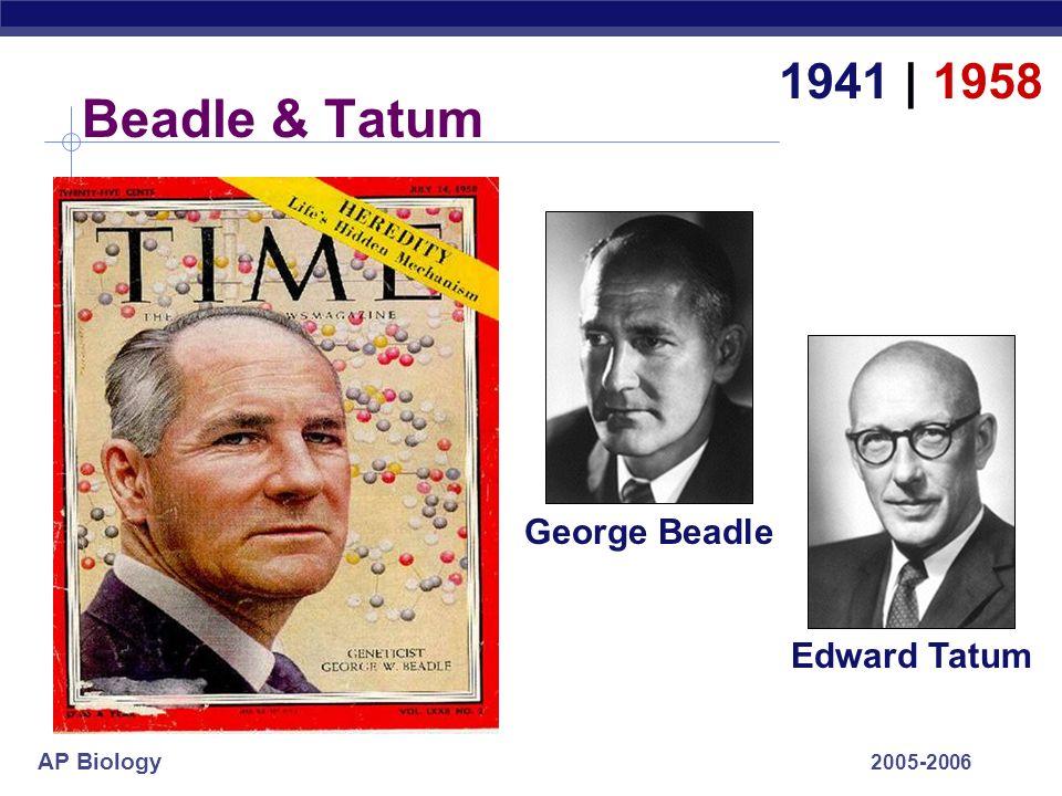 AP Biology 2005-2006 Beadle & Tatum 1941 | 1958 George Beadle Edward Tatum