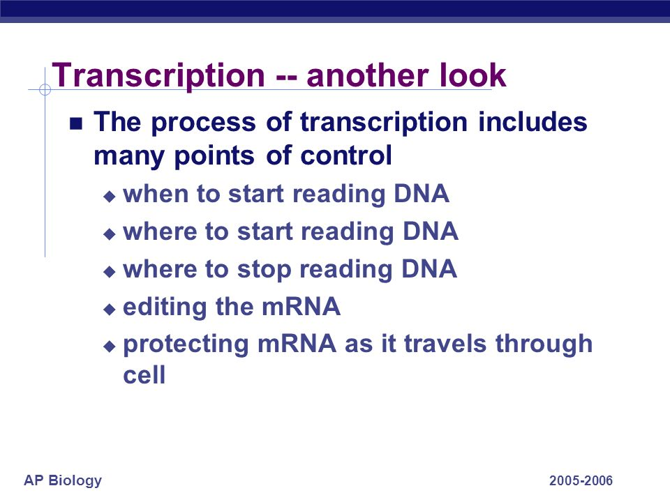 AP Biology 2005-2006 Chapter 17. RNA Processing