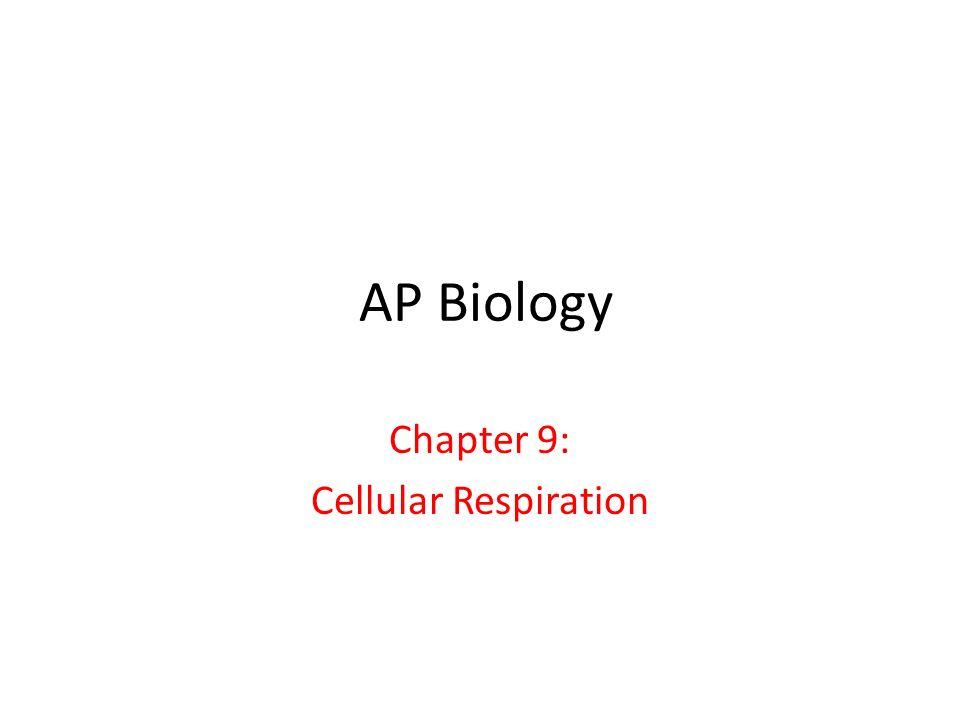 AP Biology Chapter 9: Cellular Respiration