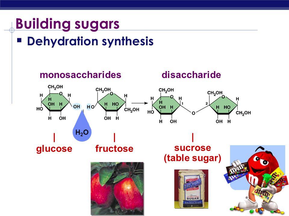 Simple & complex sugars Monosaccharides simple 1 monomer sugars Ex: glucose Disaccharides 2 monomers Ex: sucrose Polysaccharides 3+ monomers Ex: starc