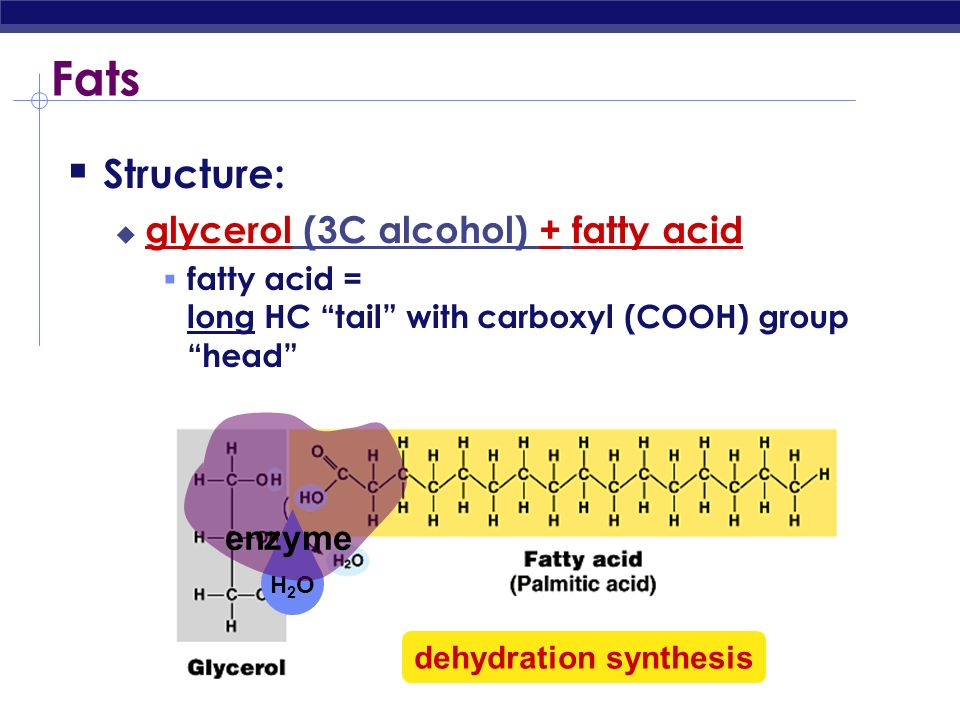 Lipids Lipids are composed of C, H, O long hydrocarbon chains (H-C) Family groups fats phospholipids steroids Do not form polymers big molecules made