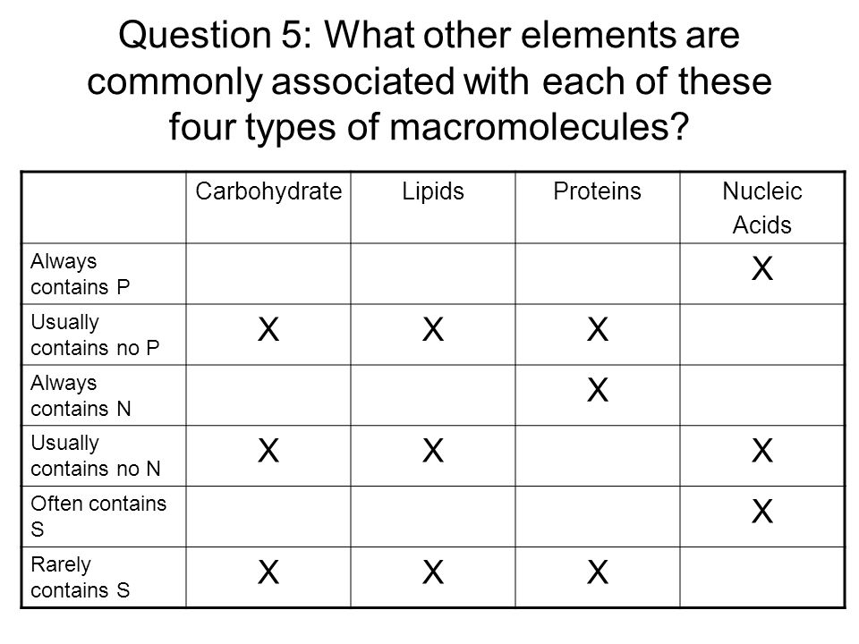 Question 5: What other elements are commonly associated with each of these four types of macromolecules? CarbohydrateLipidsProteinsNucleic Acids Alway
