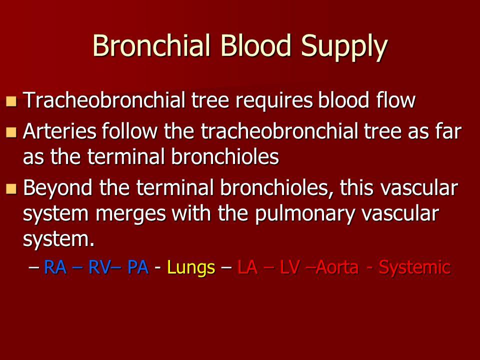 Bronchial Blood Supply Tracheobronchial tree requires blood flow Tracheobronchial tree requires blood flow Arteries follow the tracheobronchial tree a