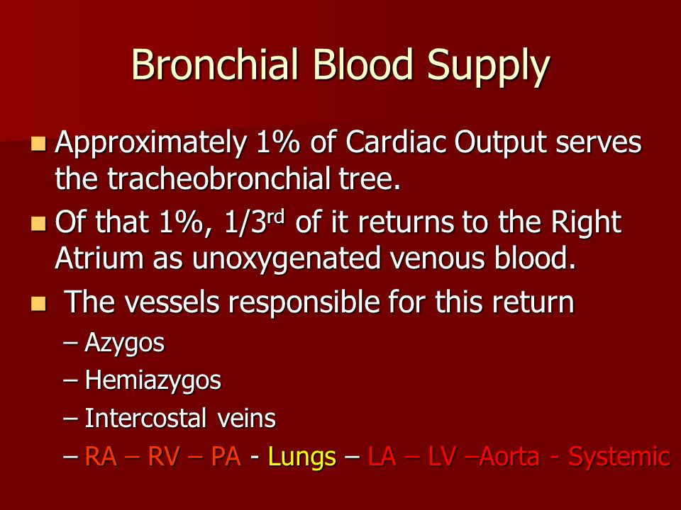 Bronchial Blood Supply Approximately 1% of Cardiac Output serves the tracheobronchial tree. Approximately 1% of Cardiac Output serves the tracheobronc