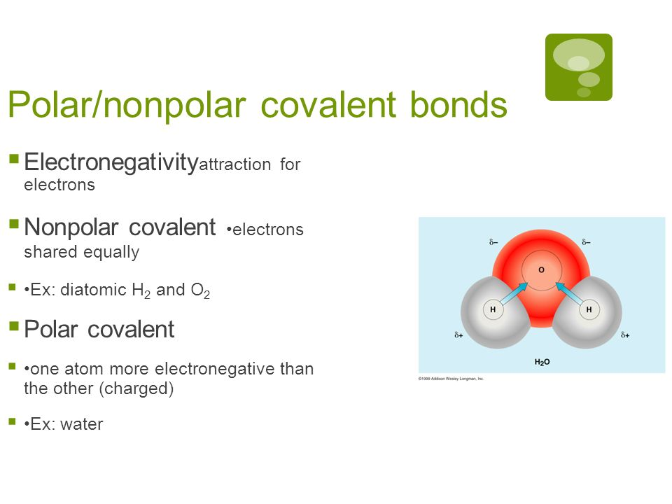 Polar/nonpolar covalent bonds Electronegativity attraction for electrons Nonpolar covalent electrons shared equally Ex: diatomic H 2 and O 2 Polar covalent one atom more electronegative than the other (charged) Ex: water