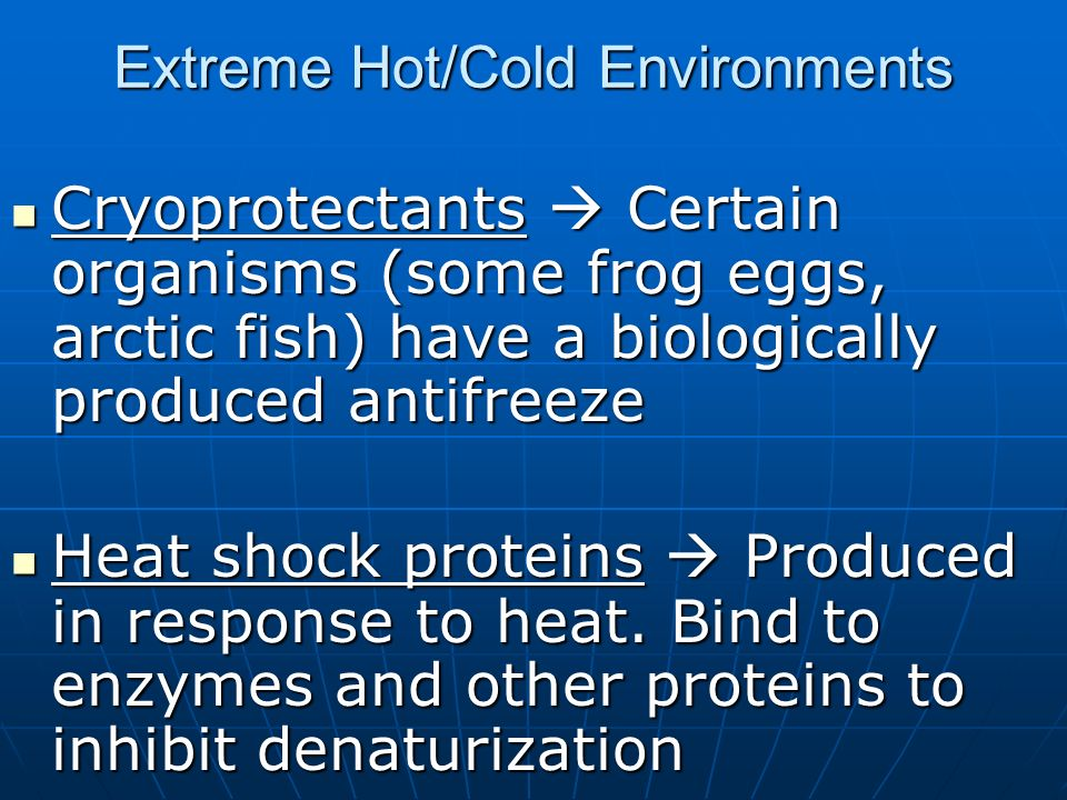 Extreme Hot/Cold Environments Cryoprotectants Certain organisms (some frog eggs, arctic fish) have a biologically produced antifreeze Cryoprotectants