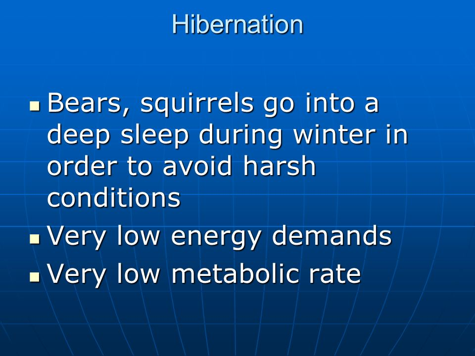 Hibernation Bears, squirrels go into a deep sleep during winter in order to avoid harsh conditions Bears, squirrels go into a deep sleep during winter