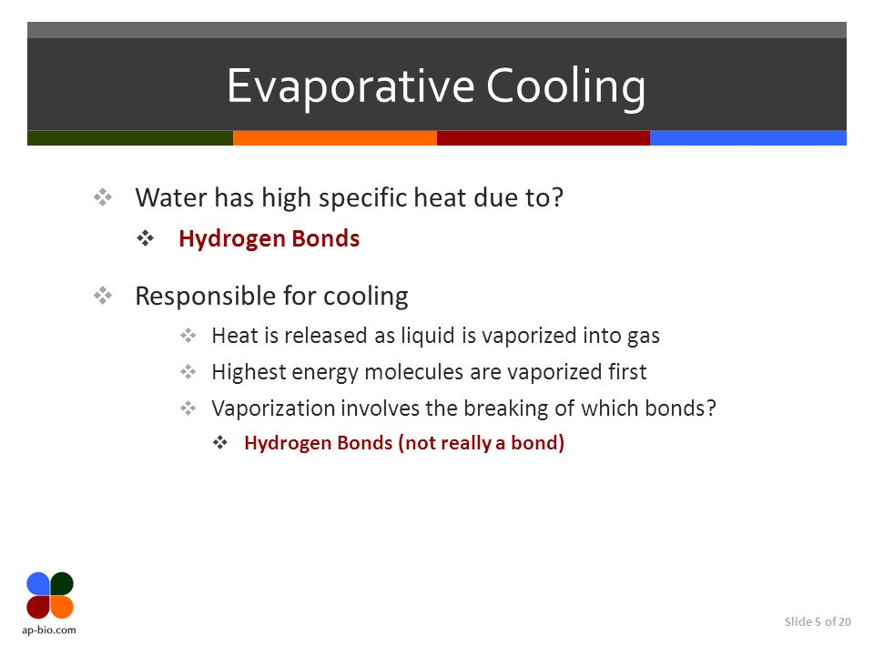 Slide 5 of 20 Evaporative Cooling Water has high specific heat due to.
