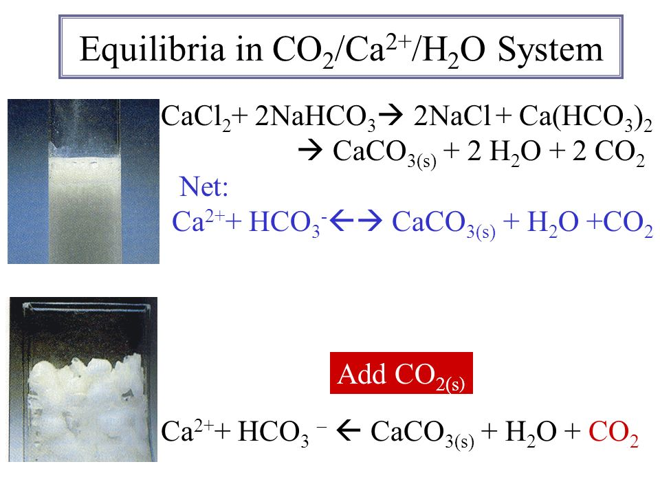 Equilibria in CO 2 /Ca 2+ /H 2 O System CaCl 2 + 2NaHCO 3 Add CO 2(s ) Ca 2+ + HCO 3 – CaCO 3(s) + H 2 O + CO 2 2NaCl + Ca(HCO 3 ) 2 CaCO 3(s) + 2 H 2