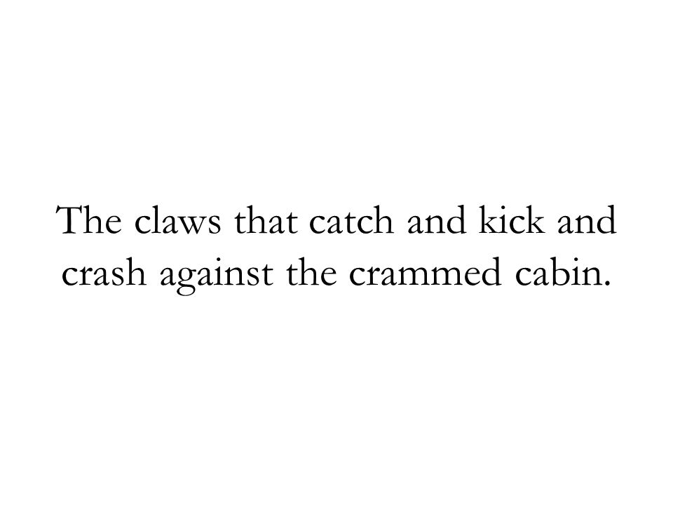 The claws that catch and kick and crash against the crammed cabin.