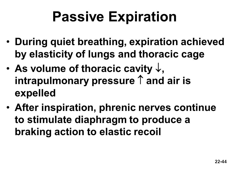 22-44 Passive Expiration During quiet breathing, expiration achieved by elasticity of lungs and thoracic cage As volume of thoracic cavity, intrapulmo