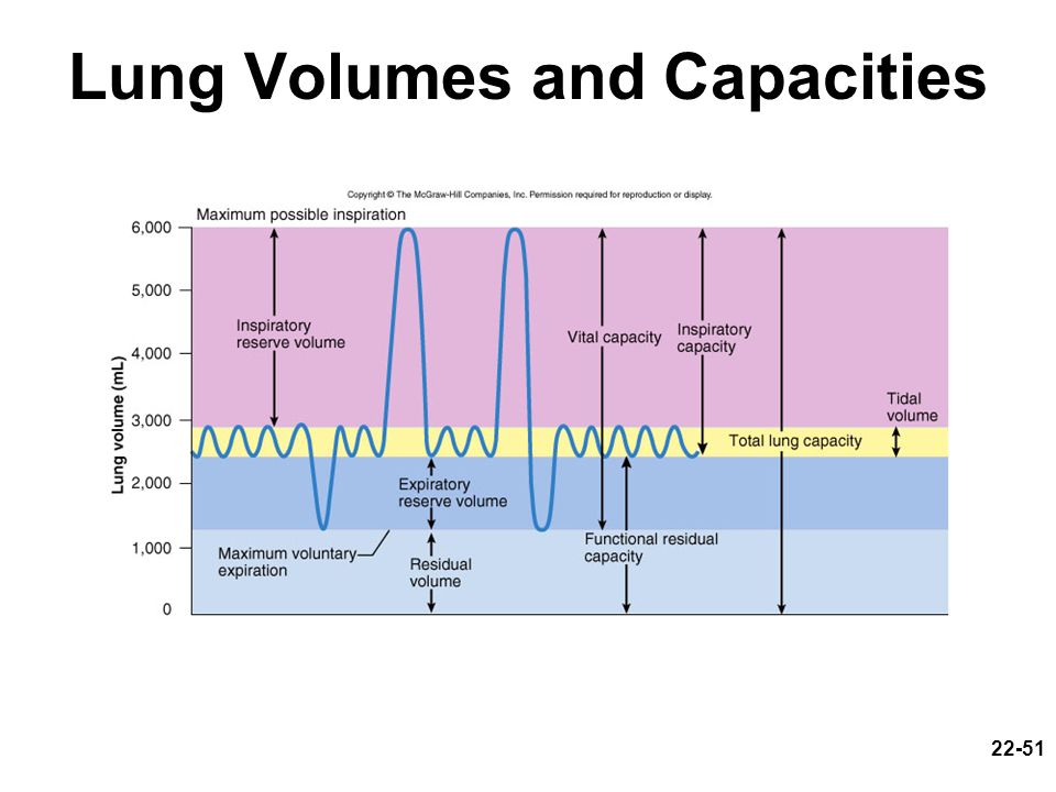 22-51 Lung Volumes and Capacities