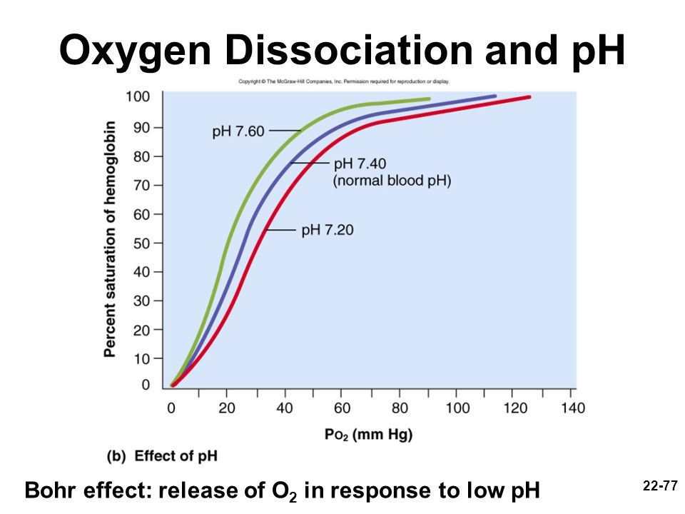 22-77 Oxygen Dissociation and pH Bohr effect: release of O 2 in response to low pH