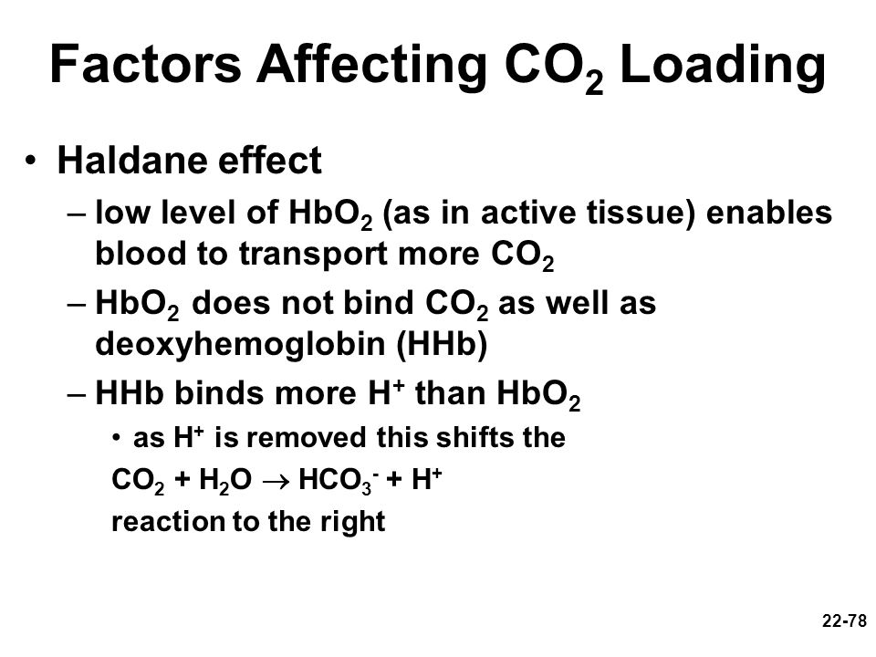 22-78 Haldane effect –low level of HbO 2 (as in active tissue) enables blood to transport more CO 2 –HbO 2 does not bind CO 2 as well as deoxyhemoglob