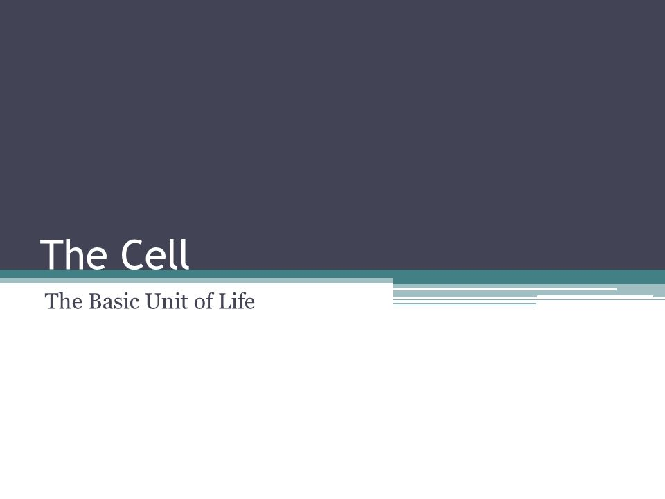 The Cell The Basic Unit of Life