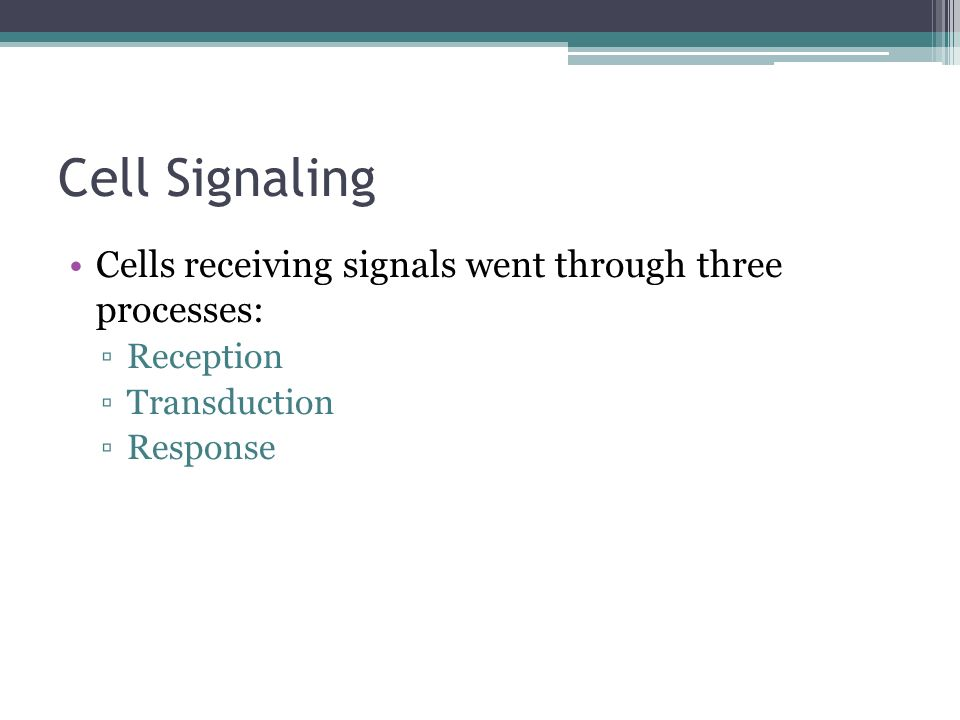 Cell Signaling Cells receiving signals went through three processes: Reception Transduction Response