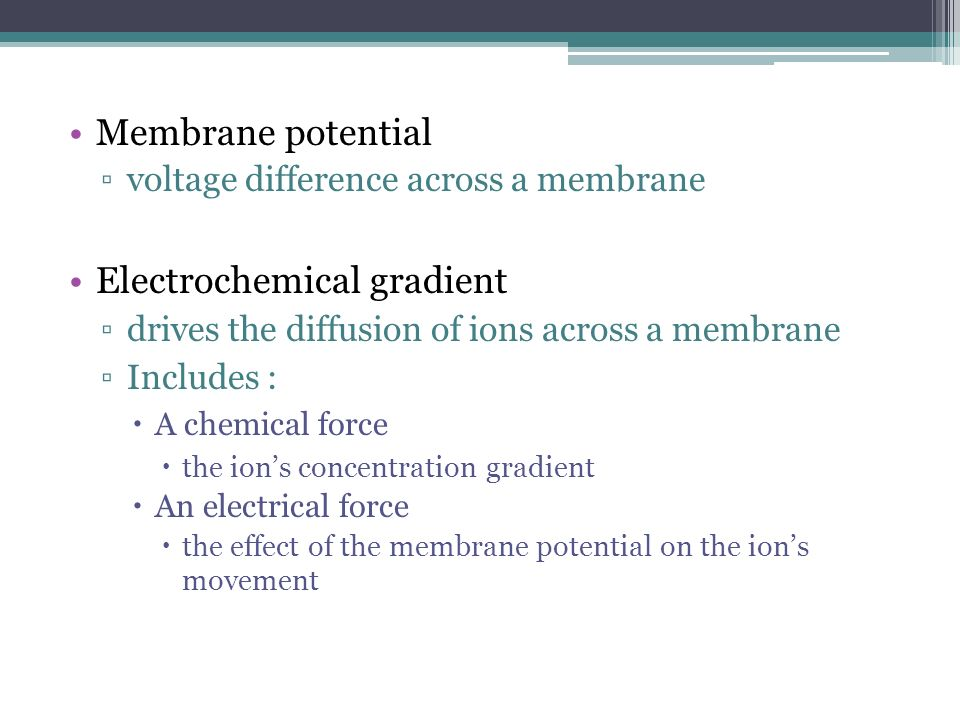 Membrane potential voltage difference across a membrane Electrochemical gradient drives the diffusion of ions across a membrane Includes : A chemical