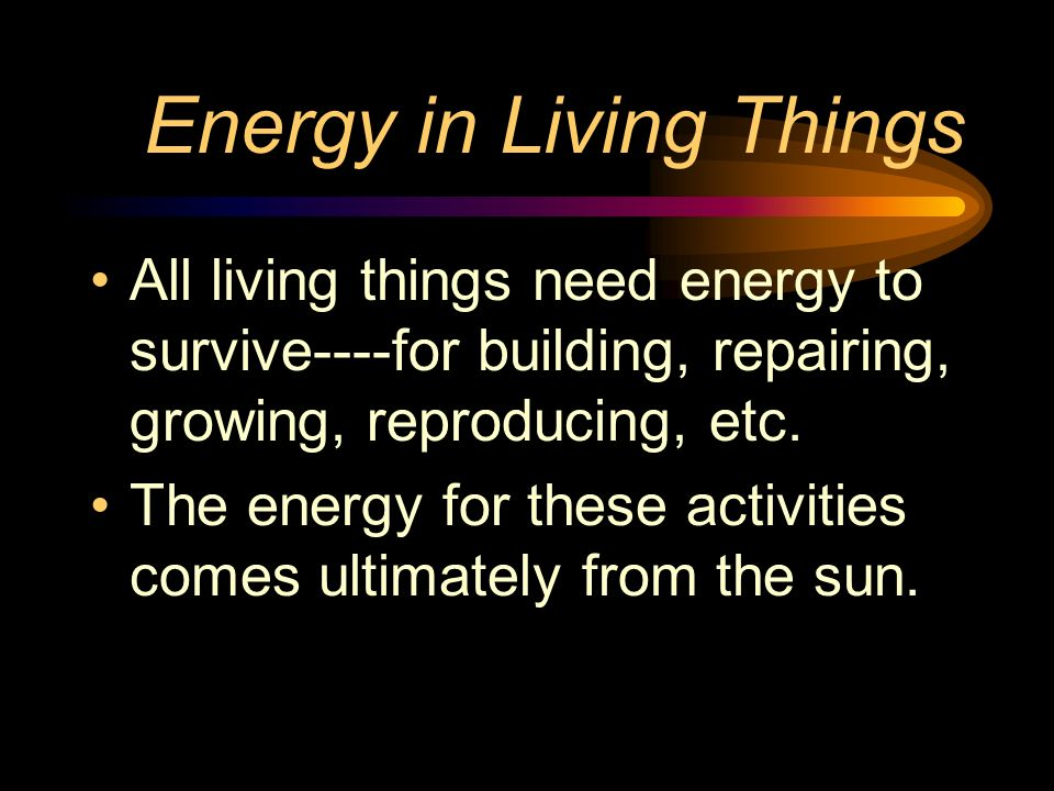 Energy in Living Things All living things need energy to survive----for building, repairing, growing, reproducing, etc. The energy for these activitie