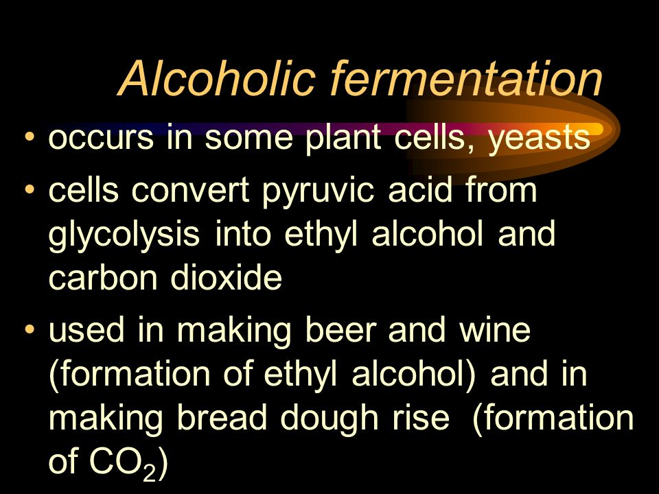 Alcoholic fermentation occurs in some plant cells, yeasts cells convert pyruvic acid from glycolysis into ethyl alcohol and carbon dioxide used in mak
