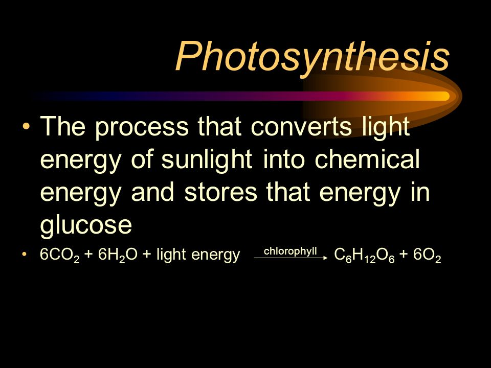 Photosynthesis The process that converts light energy of sunlight into chemical energy and stores that energy in glucose 6CO 2 + 6H 2 O + light energy