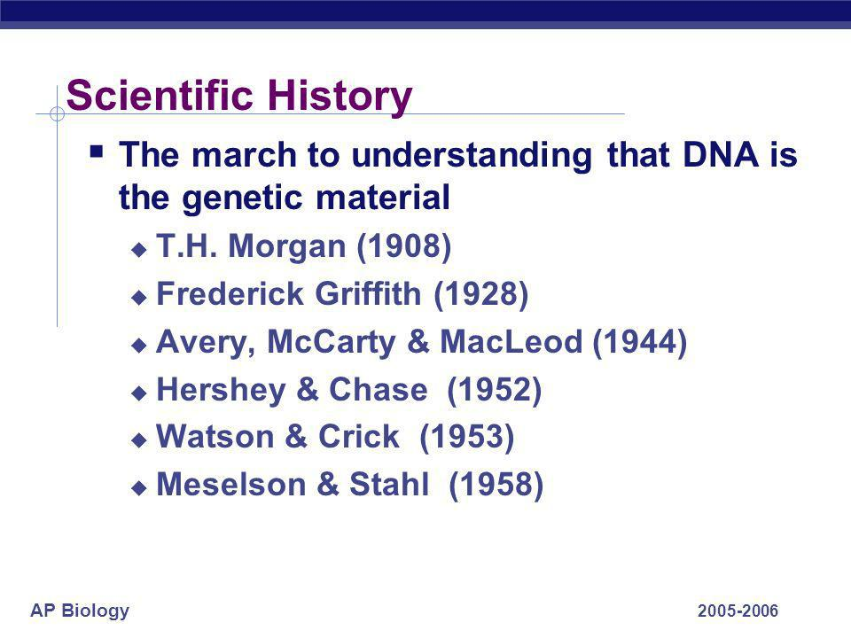 AP Biology 2005-2006 Chapter 16. DNA The Genetic Material Replication