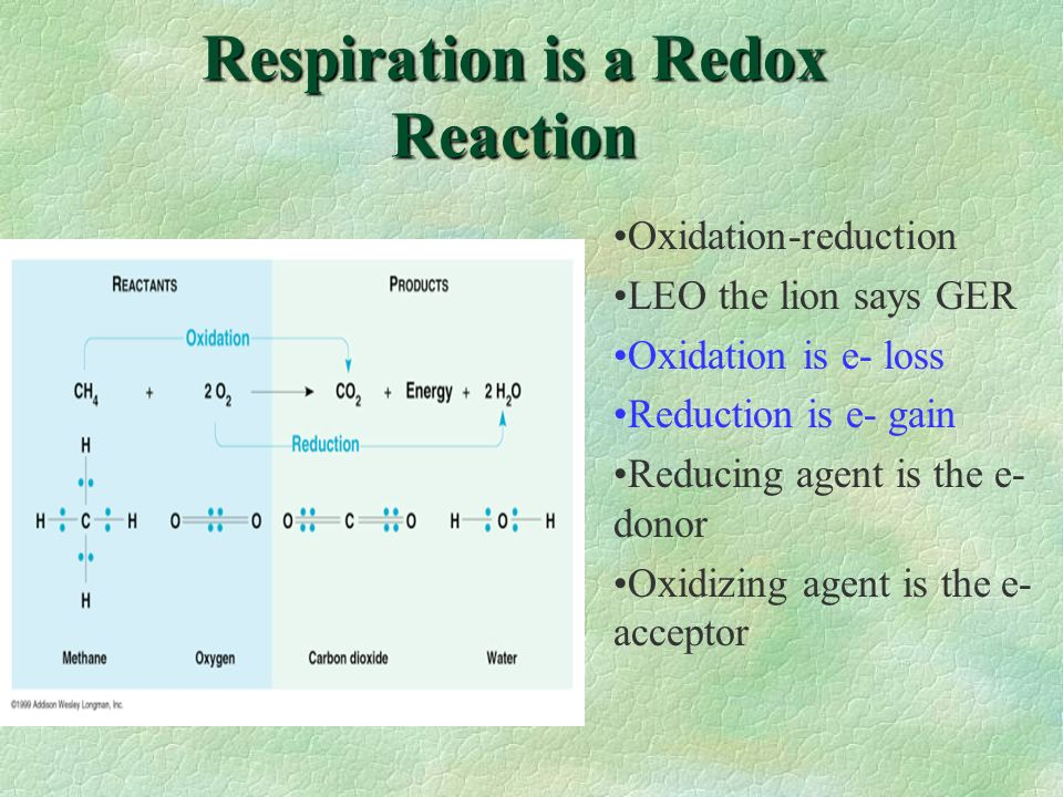 Respiration is a Redox Reaction Oxidation-reduction LEO the lion says GER Oxidation is e- loss Reduction is e- gain Reducing agent is the e- donor Oxi