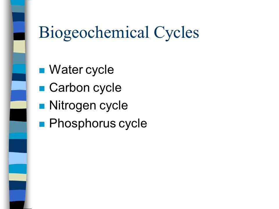 Biogeochemical Cycles n Water cycle n Carbon cycle n Nitrogen cycle n Phosphorus cycle