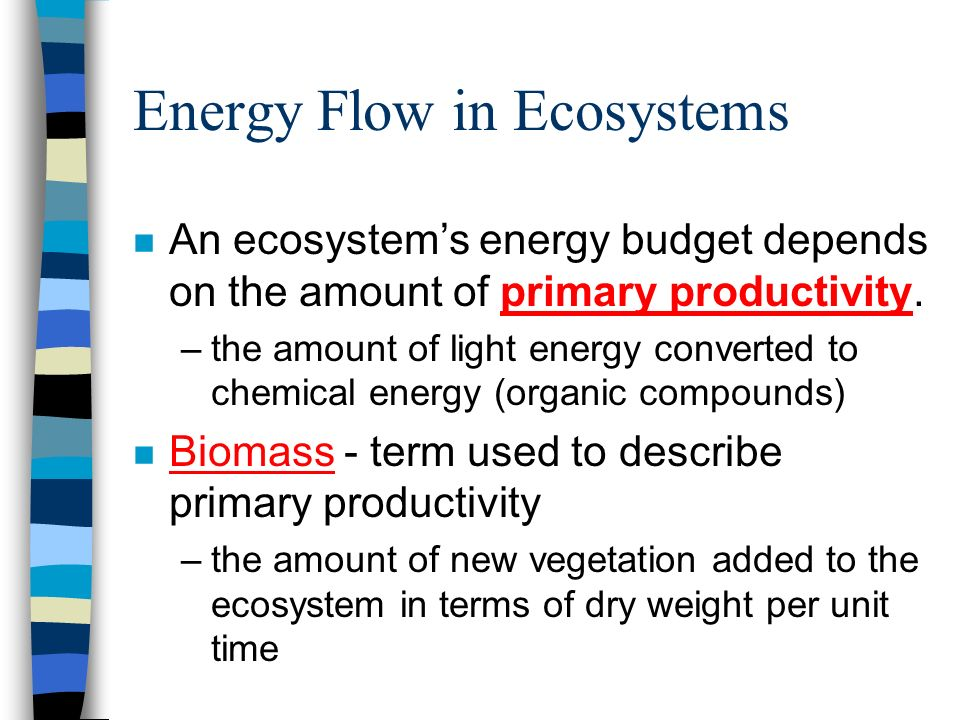 Energy Flow in Ecosystems n An ecosystems energy budget depends on the amount of primary productivity. –the amount of light energy converted to chemic