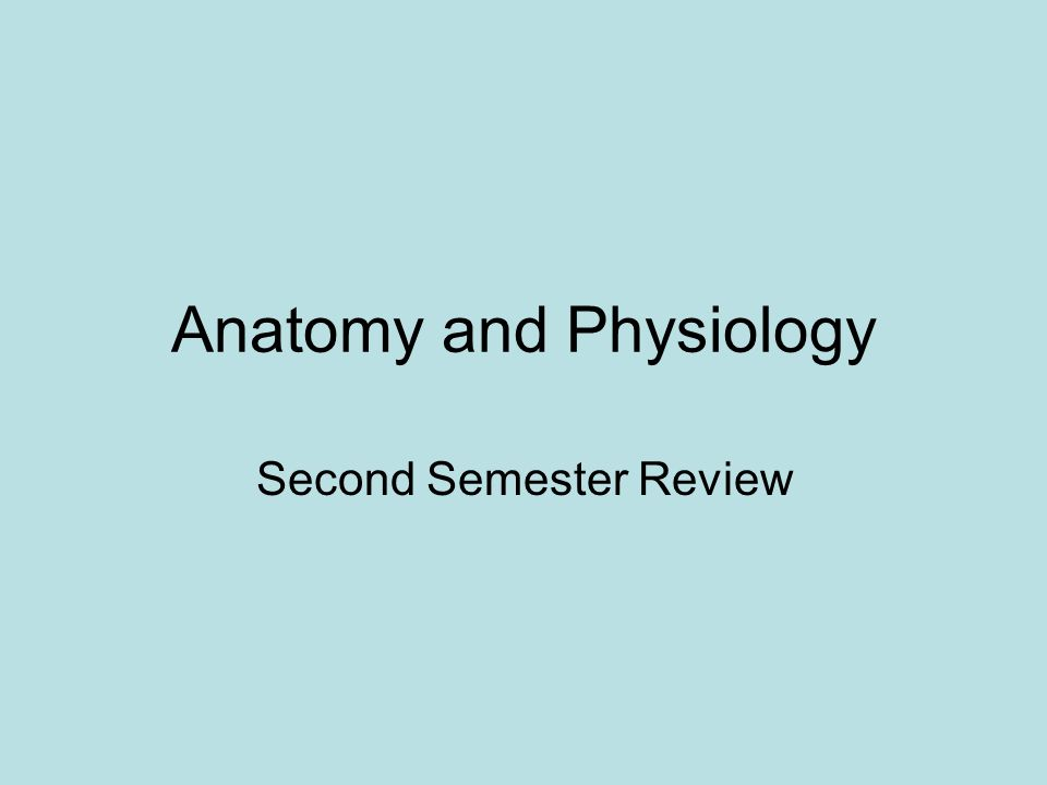 Anatomy and Physiology Second Semester Review
